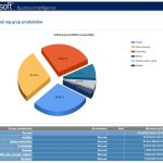 Business Intelligence program